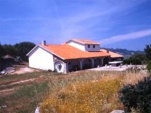 Azienda Vinicola Pedra Majore- azienda