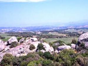 Azienda Vinicola Pedra Majore- paesaggio