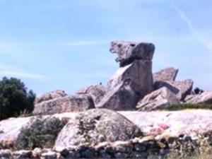 Azienda Vinicola Pedra Majore- particolare del territorio