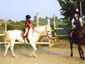 Consorzio Gusta La Maremma_esercitazione a cavallo