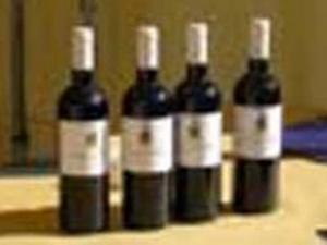 Consorzio Gusta La Maremma_vini