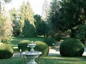 Ristorante Il Gestore_giardino