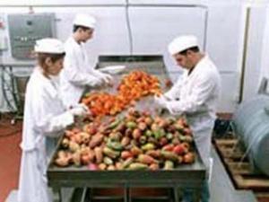 Conserve Alimentari Marmellate Ortosicilia_lavorazione fichi d india