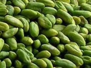 Prodotti Tipici Bronte Pistacchio_pistacchi verdi