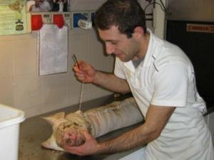 Gastronomia Riboldi