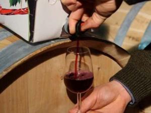 Assaggio vino
