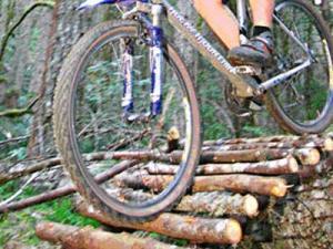 Passeggiate in Mountain bike