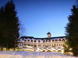 Panoramica notturna totale con pini e neve