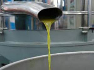 L'olio
