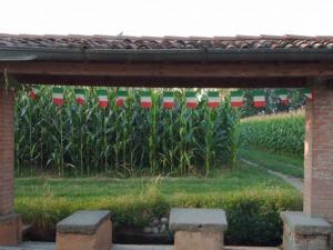 Agriturismo Il Castignolo