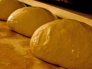 La lenta lievitazione naturale delle pagnotte di pane