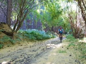 Mountain bike Etna Nord