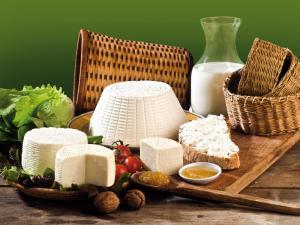 Ricotta e formaggi freschi