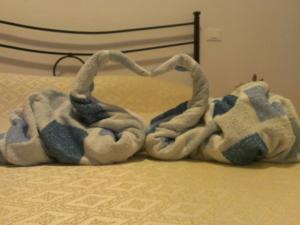 Asciugamani cigni