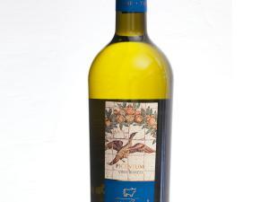 Vino bianco - Picentum